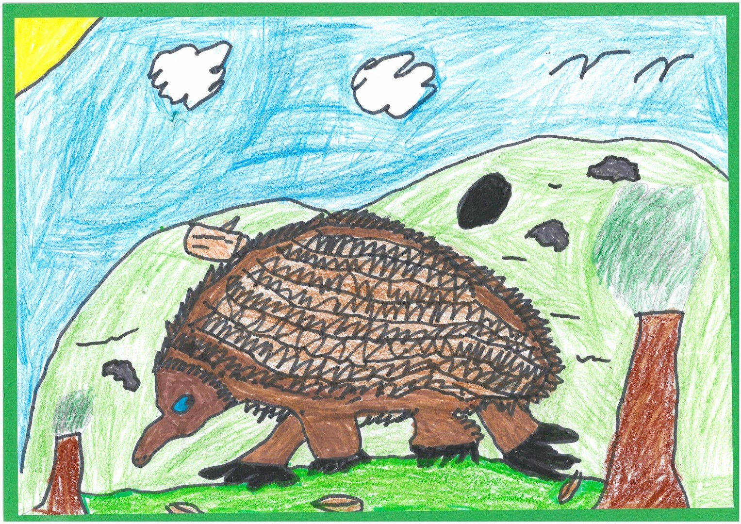 2017 Celebrate Australia Primary School Art Competition Highly Commended Section Two: Saving Echidnas by Samaul Brown